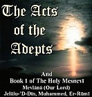 Acts of the Adepts : Holy Mesnevi Book 1