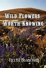 Wild Flowers Worth Knowing